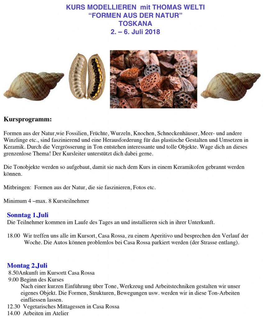 Microsoft Word - KURS MODELLIEREN  mit THOMAS WELTI.docx